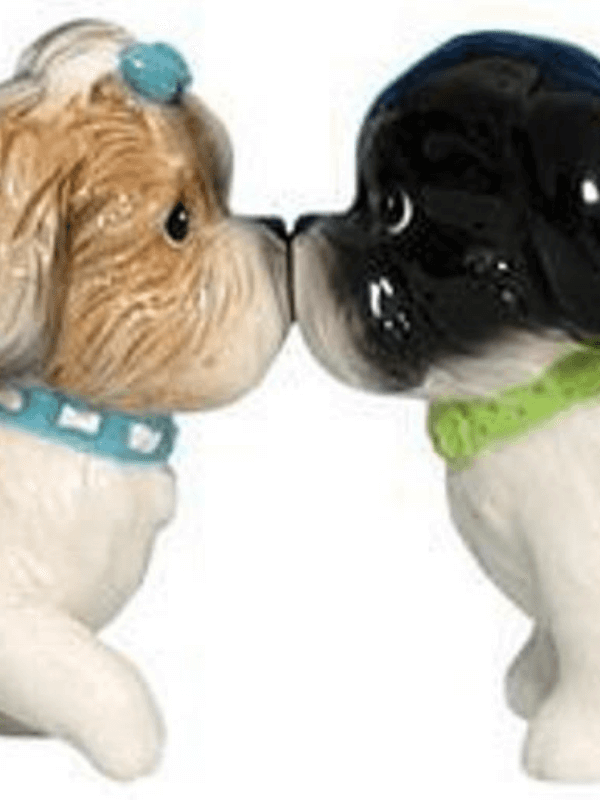 Gifts for the Shih Tzu lover in your life - The Pet Lifestyle Guru